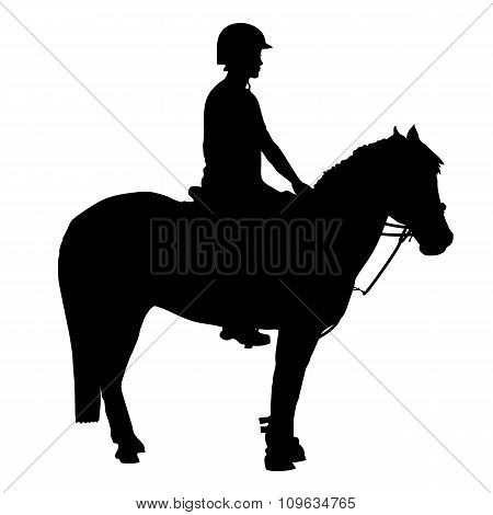 Mounted Games Pony