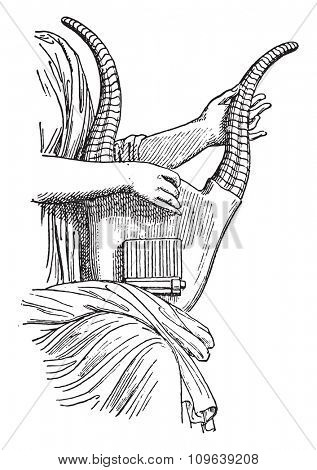 Lyre horn, vintage engraved illustration. Private life of Ancient Antique family 1881.