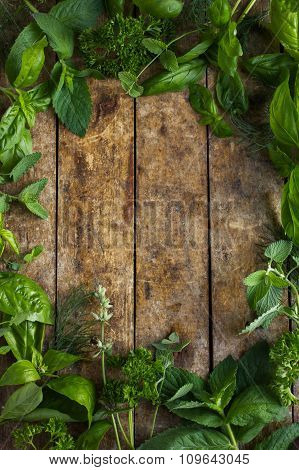 Food Background With Aromatic Herbs.