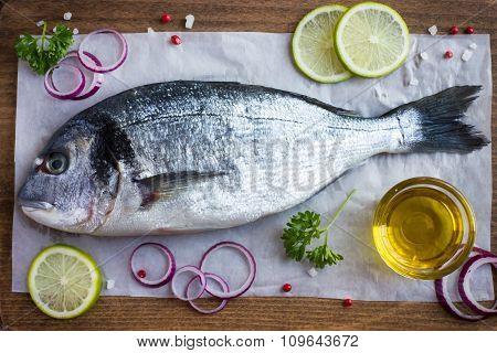 Fresh Raw Dorado Fish With Spices