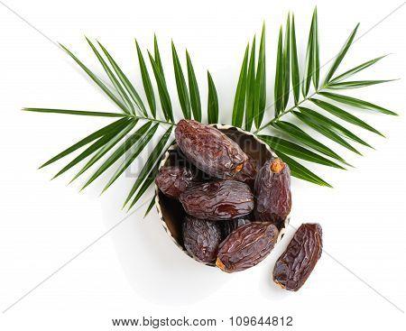 Medjool Dried Date Fruits