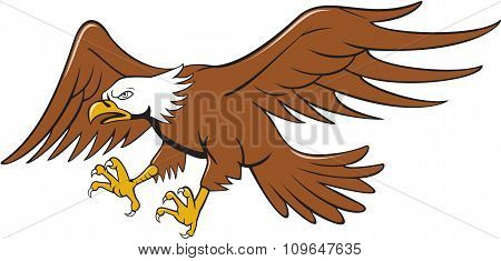 American Bald Eagle Swooping Cartoon