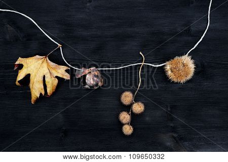Natural Christmas Decorations Of Leaves, Chestnuts And Nuts