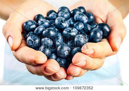 Female hand holding tasty ripe blueberries close up