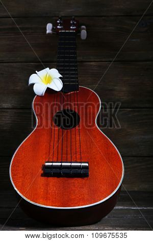 Hawaiian acoustic guitar and flower on dark wooden background
