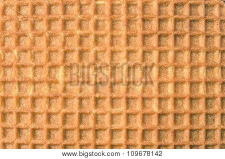 Dutch Cell Wafer For Background