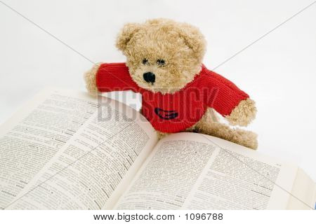 Teddy Bear Reading