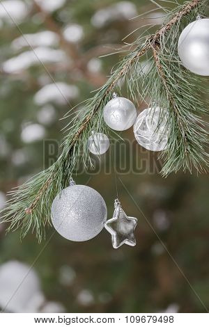Live pine green branches with Christmas ornaments of baubles and star