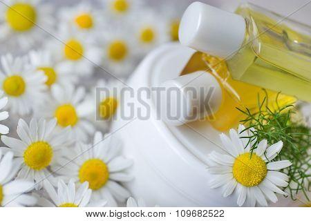 Herbal Healing Creme - Camomile