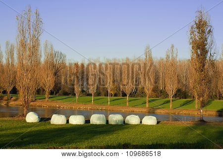 Bales Of Hay In The Countryside