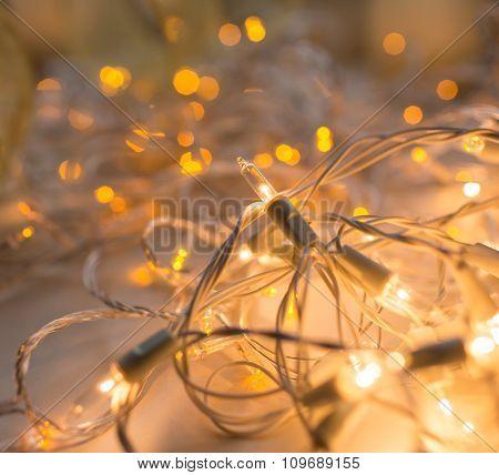 Gold garland lights