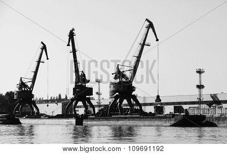 Dark Silhouettes Of Industrial Port Cranes