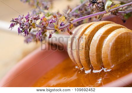 sweet honey spoon