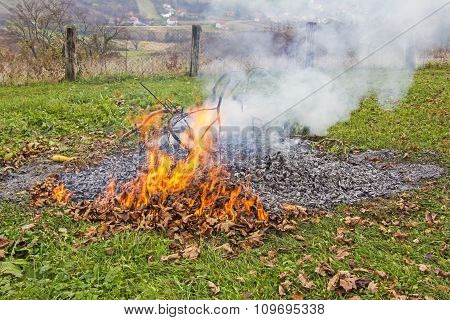 Burning Of Garden Waste