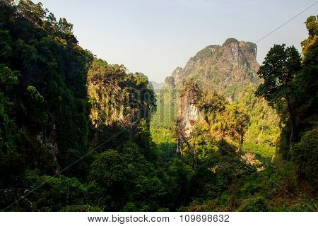 View Of Cliffs Covered With Plants Under Shadow And Sunlight