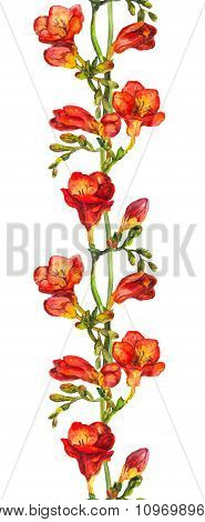 Seamless floral border with red watercolor flowers freesias