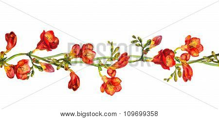 Seamless floral border stripe with flower of red freesia