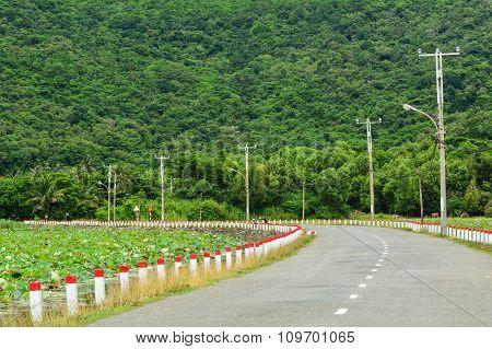Con Dao Road