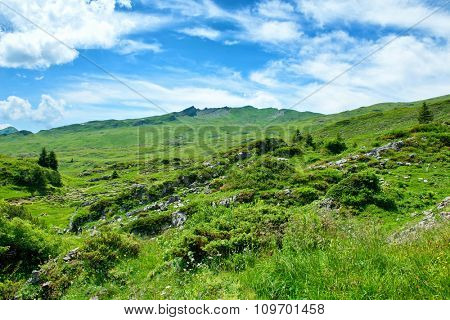 Scenic Landscape View of Green Mountain Ridge as seen from Grassy Alpine Valley on Sunny Day with Blue Sky