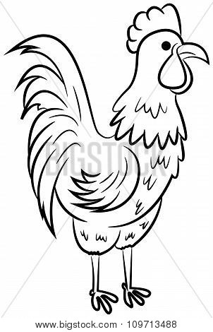 Beautiful Rooster Character