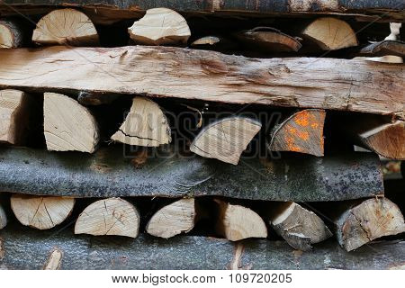 Logs Stockpiled For Firewood Vertically.
