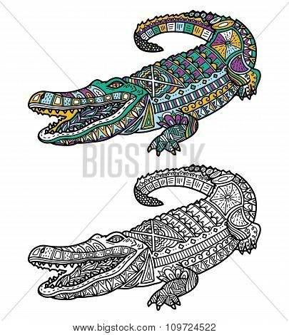 Crocodile coloring