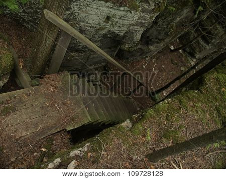 Wood Staircase In Dark Forest
