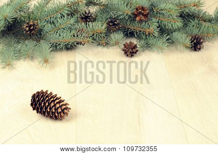 Branches Of Blue Spruce Nd Cones