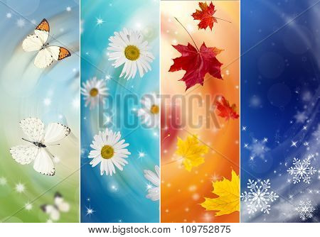 Collage Of Four Seasons