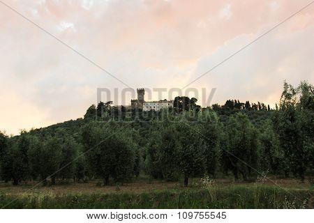 Castle On The Headland-2