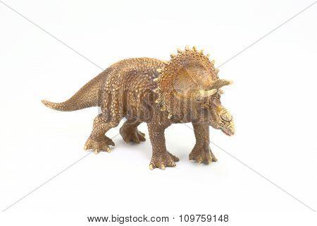 Ceratopsidae Dinosaurs