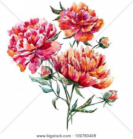 Watercolor raster peony