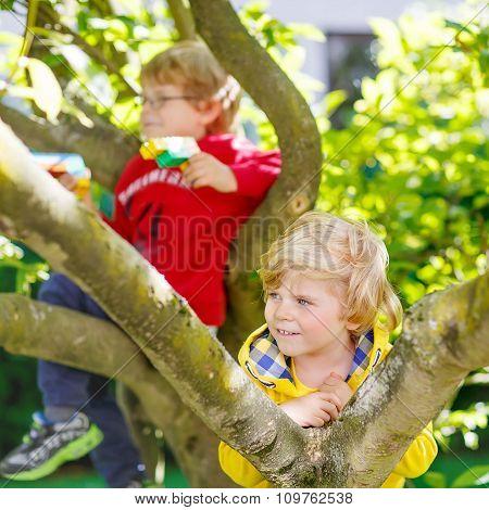 Two active little kid boys enjoying climbing on tree