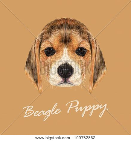 Vector Illustrated Portrait of Beagle Dog