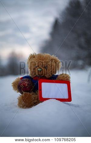 Teddy Bear With Empty Horizontal Frame