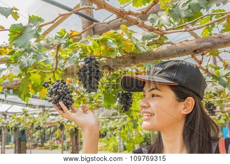 Young Woman With Grapes Outdoor