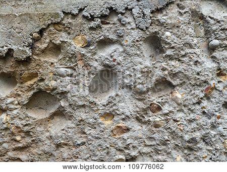 Old Coquina Texture