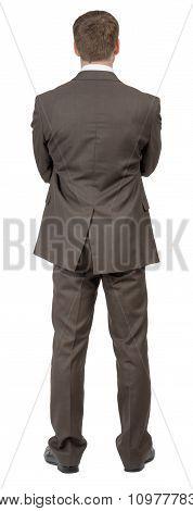 Businessman standing, rear view