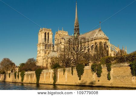 The Notre Dame Cathedral.