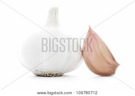 Natural garlic clove, whole bulb isolated on white background