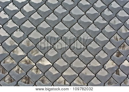 Fence Made Of Wire Mesh   With Frost.