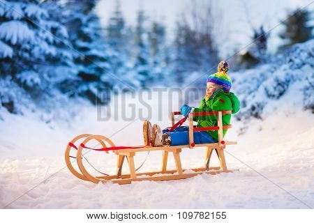 Little Boy Enjoying Sleigh Ride.