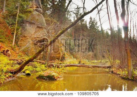 Creek In 'peklo' Valley In Autumnal Czech Nature