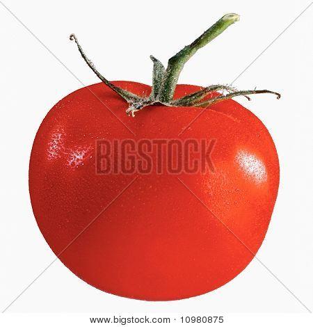 juicy and fresh tomato