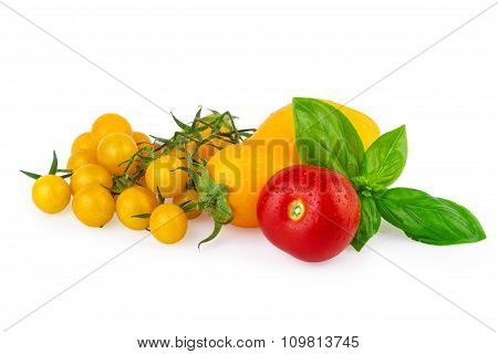 Various of Tomatoes for Cooking