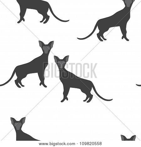 Seamless Pattern of a Cat Silhouettes.