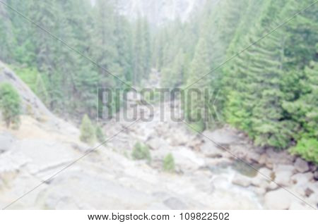 Defocused Background Of The Forest At Yosemite National Park, Usa