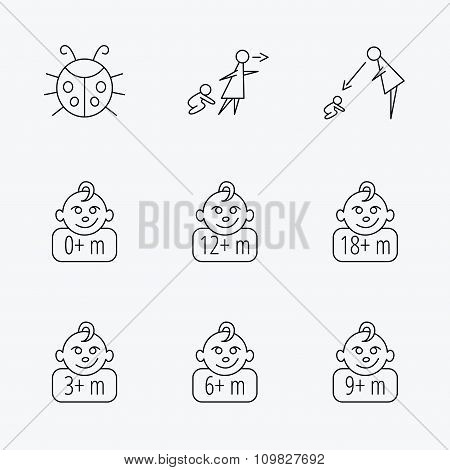 Infant child, ladybug and toddler baby icons.
