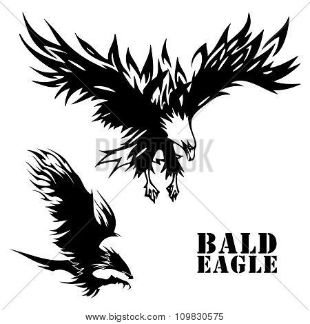 Vector Eagle tattoo sketch