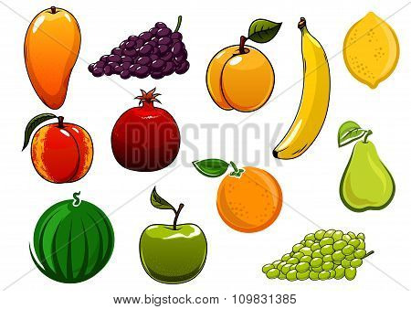 Isolated healthy organic sweet fruits set